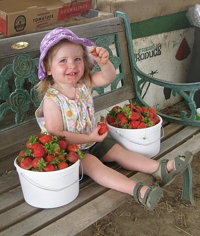 ¡Fresas! - Pacific Star Gardens