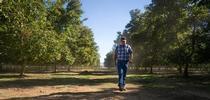 La familia de Hal Crain ha cultivado nueces durante 55 años. for Blog de Alimentos Blog
