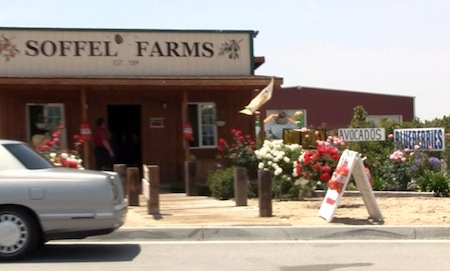 Soffel Farms storefront