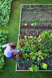 Los jardines ofrecen muchos beneficios a individuos, familias y comunidades