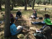 The California Naturalist training involves both classroom and field sessions.
