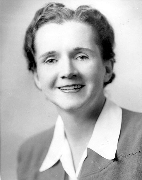 Rachel Carson in her Fish and Wildlife Service employee photo.