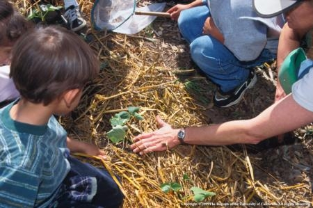 Building school gardens is a one goal of the FoodCorps program.