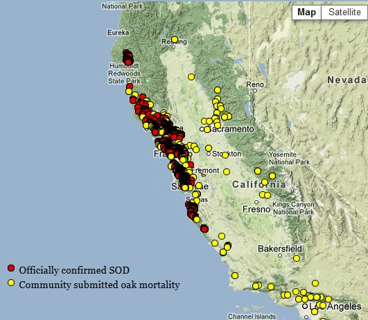 An image from the Oak Mapper website (oakmapper.org) where citizen-submitted scientific data is collected.