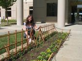 Margaret Lloyd waters the Salad Bowl Garden at UC Davis.