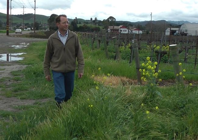 Mark Battany at a San Luis Obispo County vineyard.