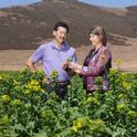 Steve Koike, left, in a broccoli raab field with a USDA plant pathologist. (Photo: USDA)