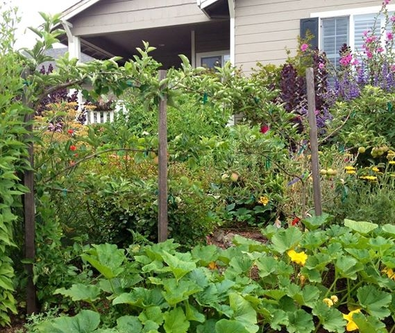 Hardworking backyard gardens can produce enough food to sell at a farmers market.