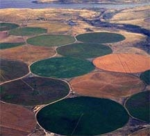Aerial view of center-pivot irrigation.