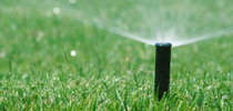 Sprinklers don't need to run after rainfall. for ANR News Blog Blog