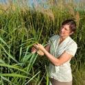 Pamela Ronald says genetic modification is just as safe as the plant breeding humans have been doing for 10,000 years.