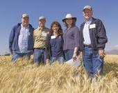 Participants in the Intermountain REC field day included (from left) UCCE vice provost Chris Greer, IREC director Rob Wilson, REC system associate director Lisa Fischer, ANR vice president Barbara Allen-Diaz and ANR associate vice president Bill Frost. (Photo: Todd Fitchette, courtesy of Western Farm Press),