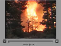 A frame from the fire video.