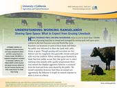 A new free UC ANR publication helps hikers, bikers and runners peacefully co-exist with grazing animals.
