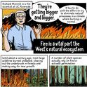 UC Riverside's Richard Minnich is featured in a KQED infographic on wildfires created by artist Andy Warner.