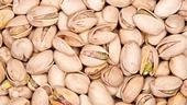 A lack of winter chill can increase the number of pistachio blanks. (Photo: Wikimedia Commons)