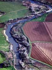 Delta  farmland.
