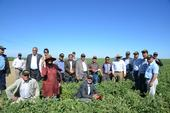 Farmer Jesse Sanchez hosted an agricultural tour from Afghanistan at Sano Farms last year as part of his involvement with UC ANR's Conservation Agriculture Systems Innovation Center.