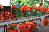An abundance of fresh, locally grown food in California is sparking interest in home food preservation. (Photo: USDA)