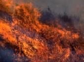 Wildfire was not unusual in prehistoric California.
