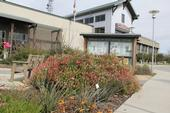 The 'Learning Landscape' at the UCCE office in San Joaquin County is maintained by UC Master Gardeners.