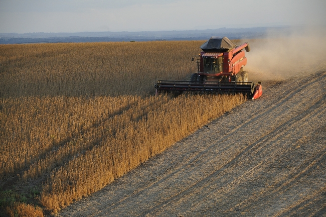 Reductions in nitrous oxide emissions from coal-fired power plants have increased yields of soy and corn crops.