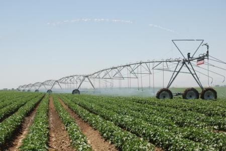 More savings can be realized by combining overhead irrigation with conservation tillage.