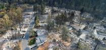 Drone footage of the Camp Fire aftermath shows homes destroyed while green trees are unscathed. for ANR News Blog Blog