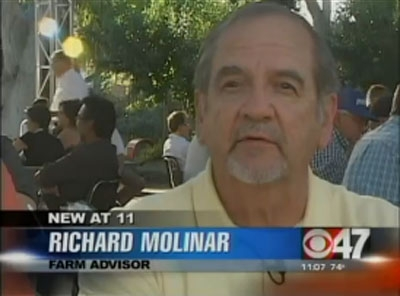 UCCE farm advisor Richard Molinar speaks about melon fly on the CBS Channel 47 news.