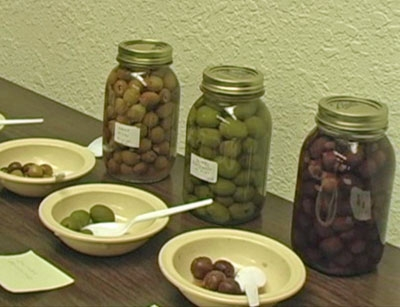 Garden writer steers readers to UCCE for olive curing advice.
