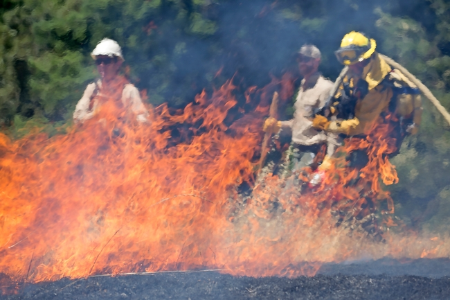 2017 prescribed burn training in Humboldt County