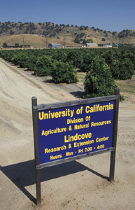 The Lindcove REC is east of Visalia.