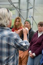 Steve Quirt demonstrates fruit tree grafting at the Indian Valley Organic Farm in Novato.