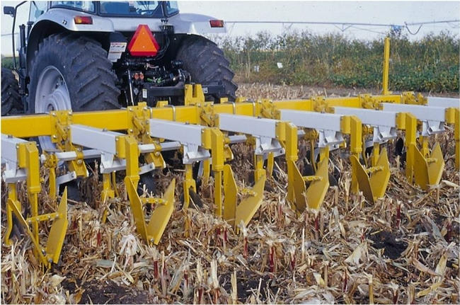 More farmers are using conservation agriculture systems.