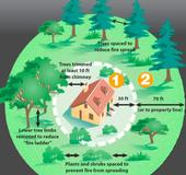 CalFire in California provides detailed information on creating a home defense zone. See UC publication <a href=http://anrcatalog.ucdavis.edu/pdf/8228.pdf>Home Landscaping for Fire</a>
