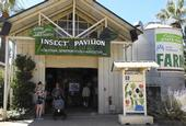 The California State Fair's Insect Pavilion is home to multiple displays borrowed from the Bohart Museum of Entomology, UC Davis. (Photo by Kathy Keatley Garvey)