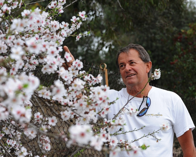 Benicia resident Gordon Hough stops to check for honey bees at the Benicia State Park. (Photo by Kathy Keatley Garvey)
