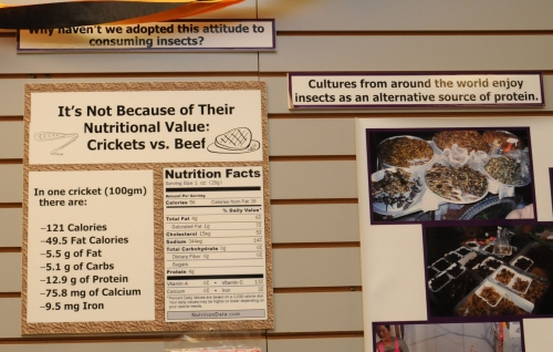 CRICKET ANYONE?--A sign at the Bohart Museum of Entomology indicates the nutritional value of eating a cricket. Bon appétit! (Photo by Kathy Keatley Garvey)