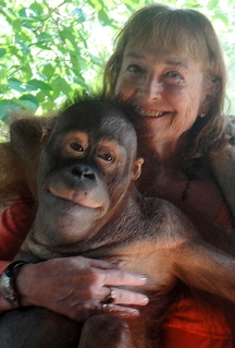 Linda Burman-Hall with an orangutan found in Indonesia, but not Mentawai