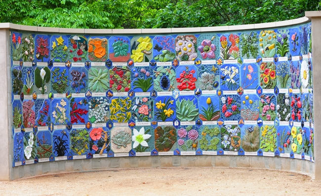 Nature's Gallery, a mosaic mural celebrating insects and plants, is now at home in the Storer Garden, UC Davis Arboretum, on Garrod Drive. (Photo by Kathy Keatley Garvey)