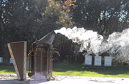 JUST SMOKIN'--Smoke curls into intricate patterns in this shot of a bee smoker at the Harry H. Laidlaw Jr. Honey Bee Research Facility at UC Davis. (Photo by Kathy Keatley Garvey)