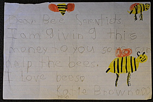 Letter to bee scientists