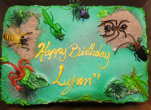 Perfect cake for an entomologist