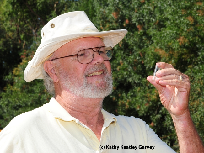 Native pollinator specialist Robbin Thorp is a retired UC Davis professor, but continues his full-time research.  (Photo by Kathy Keatley Garvey)