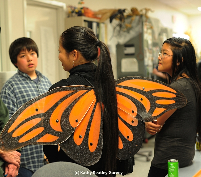 Maia Lundy of Davis Senior High School, an intern at the Bohart Museum of Entomology, spreads her monarch wings. At left is James Heydon, 11, of Davis. (Photo by Kathy Keatley Garvey)