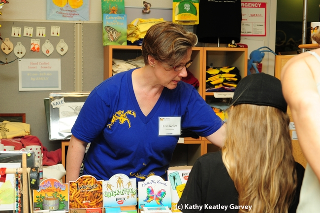 Fran Keller, doctoral candidate in entomology, helps out in the Bohart Museum's gift shop. (Photo by Kathy Keatley Garvey)