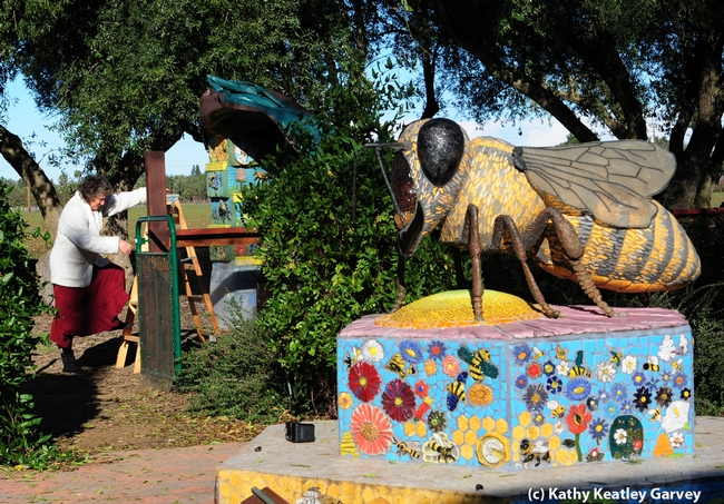 Entomologist/artist Diane Ullman uncovers a pillar. In the foreground, a bee sculpture created by colleague Donna Billick. (Photo by Kathy Keatley Garvey)
