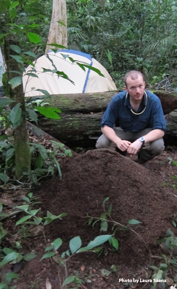 Michael Branstetter with a pile of leaf litter at the Parque Nacional Cerro Saslaya, Nicaragua. (Photos by Laura Sáenz)