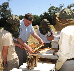 Eric Mussen introduces visitors to bees at the Harry H. Laidlaw Jr. Honey Bee Research Facility. (Photo by Kathy Keatley Garvey)