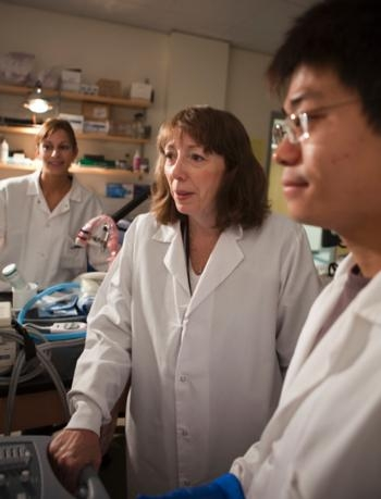 Lisa Mahakian, Katherine Ferrara and Xiaowen Hu. (Photo Courtesy of the UC Davis College of Engineering)